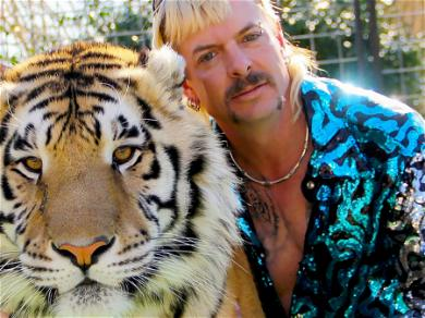 'Tiger King' Star Joe Exotic Had A Sex Den And Now The Photos Have Surfaced Of It