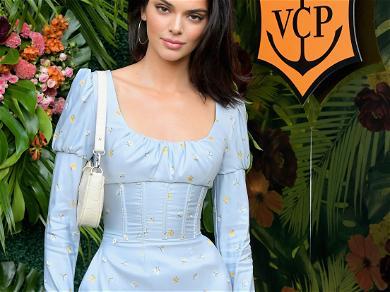 Kendall Jenner Nearly Experiences Wardrobe Malfunction in LA