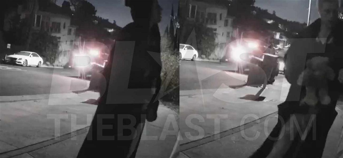 Conrad Hilton Violates Restraining Order, Seen in Bizarre Video with Stuffed Bear Outside Ex-GF's House