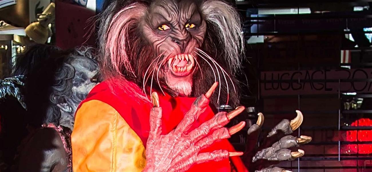 Halloween Night Roundup: Heidi Klum Wins the Night Again!