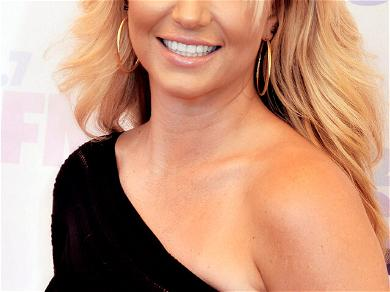 Britney Spears Hospitalized Just Weeks After 'The Zone' Opening