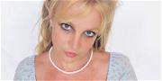 Britney Spears Sparks Major Concerns Over Bizarre Ice Cream Diet!