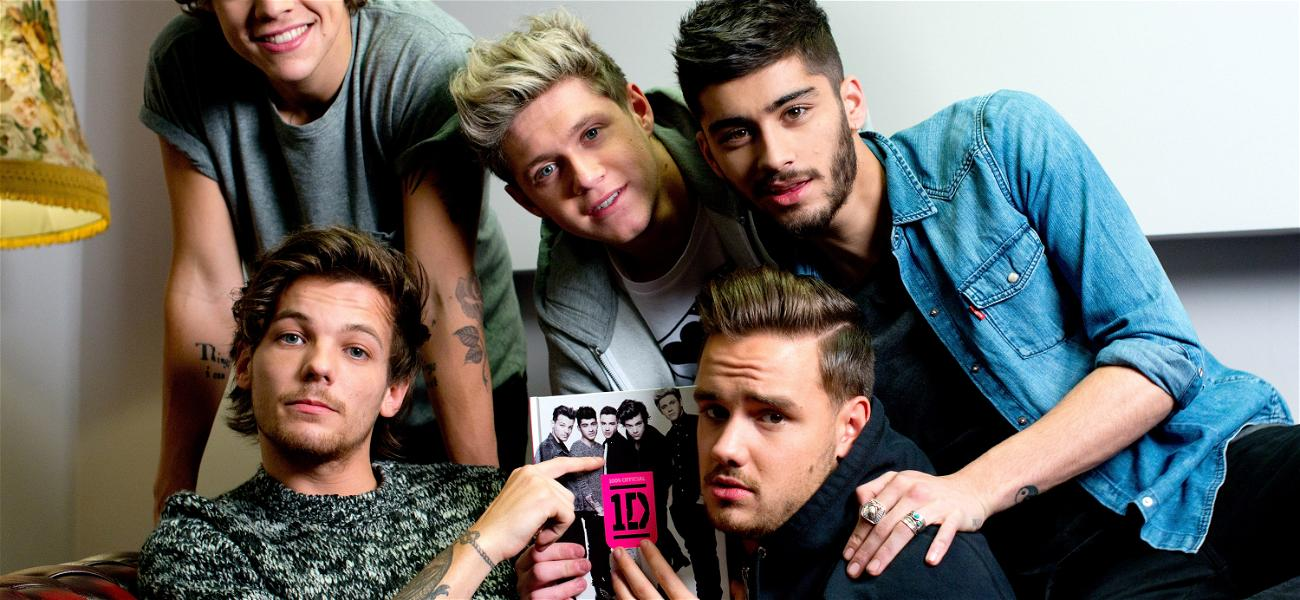 Did Niall Horan Open A Can Of Worms For One Direction?