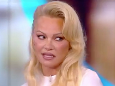 Pam Anderson Has No Time for Meghan McCain During 'The View' Argument Over Wikileaks