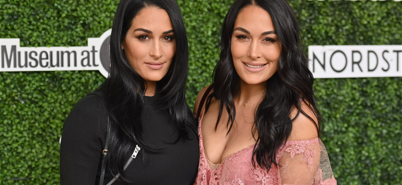 'The Bella Twins' Nikki & Brie Give Birth To Babies ONE DAY Apart!! — See The Photos!