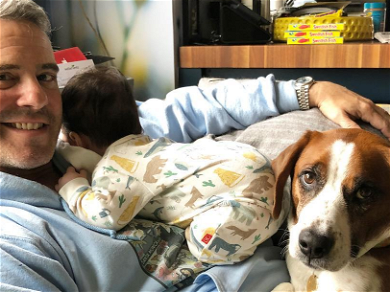 Andy Cohen Gives Up Recuse Dog 'Wacha' After Incident Involving His Son