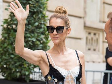 Céline Dion Cancels Several Las Vegas Shows Due to Ear Surgery