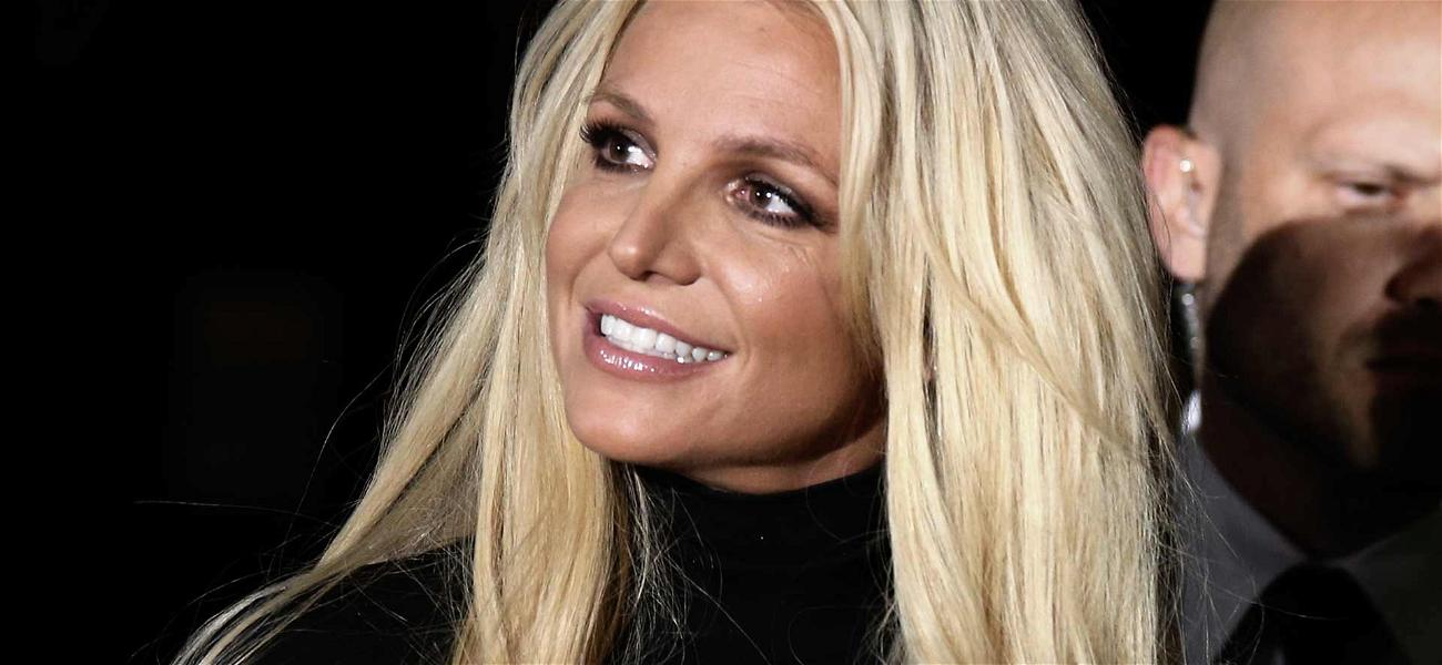 Britney Spears' Father Left as Sole Conservator of Her Estate After Lawyer Resigns