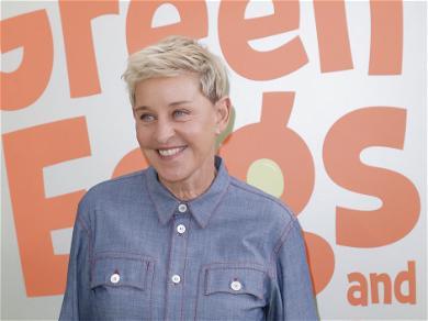 Is Ellen DeGeneres Really a Diva?