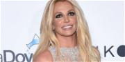 Britney Spears' Jamie Shut Down In Conservatorship Battle Over Her Money