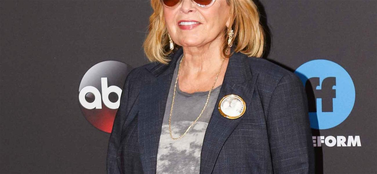 Roseanne Barr Vows to Quit Twitter After Racist Tweet About Obama Adviser