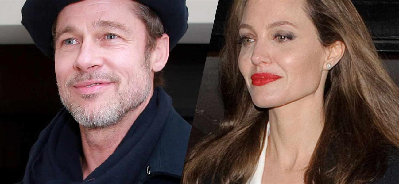 Angelina Jolie and Brad Pitt Need More Time for Settlement Discussions, Extend Private Custody Judge