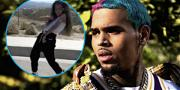 Chris Brown's Daughter, Royalty, NAILS 'Go Crazy' Dance Challenge Just Like Daddy!