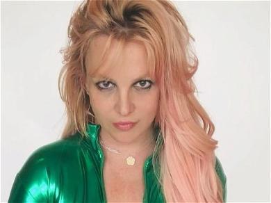 Britney Spears Celebrates Pink Hair In Sheer Cheetah Bodysuit