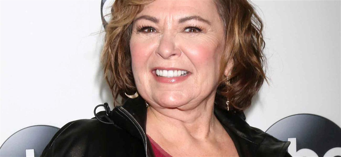 Roseanne Calls Decision to Kill Off Her Character With an Overdose 'Grim' and 'Morbid'