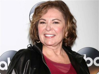 Roseanne Barr Blames Ambien 'Stupid Insensitive Joke' That Led to Cancellation