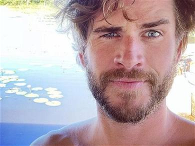 Liam Hemsworth's Career Is Struggling, According To Reports