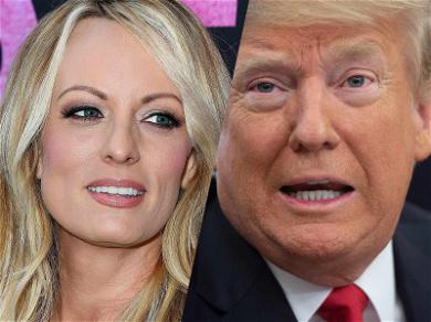 Stormy Daniels Responds to Donald Trump's 'Horseface' Comment with a Dick Joke