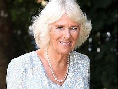 Did Camilla, Duchess of Cornwall's First Husband, Andrew Parker Bowles Also Have an Affair?