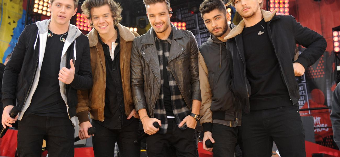 One Direction: How Have Their Careers Changed?