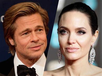 Brad Pitt and Angelina Jolie Custody Agreement Officially Filed, Brad Will Get Increasing Custody
