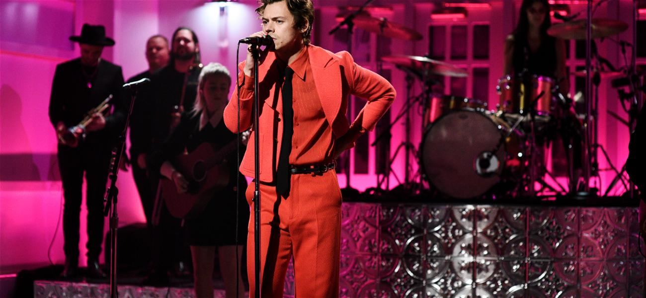 Harry Styles Is On The Fence When It Comes To Coronavirus