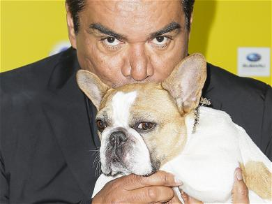 'Modern Family' Dog Beatrice Has Died
