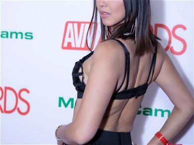 2019 AVN Awards