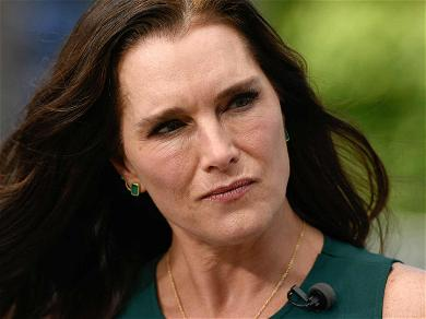 Brooke Shields Sues Cosmetics Co. and Major Retailers Over 'Brooke S' Eyebrow Pencil