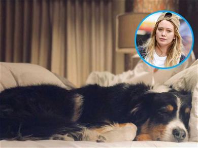 Hilary Duff Mourns Loss of Dog With Beautiful Tribute