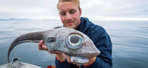 Fisherman Catches Terrifying 'Dinosaur' Fish And Then Eats It