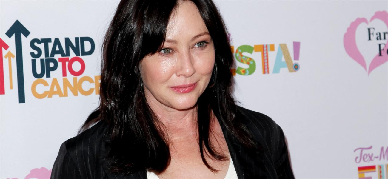 State Farm Insurance Accuses Shannen Doherty of Using Cancer Diagnosis For 'Sympathy'