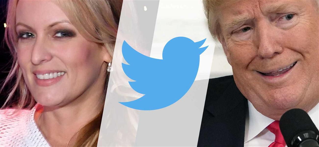 Stormy Daniels Claims Twitter is Blocking Her Verification Because of Allegiance to Trump