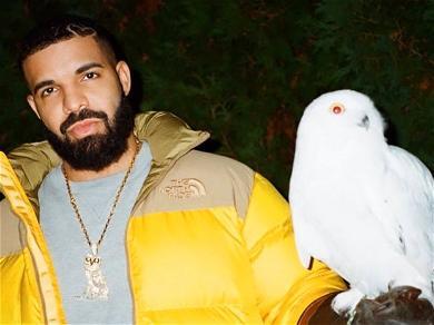 Alert! Drake Is Releasing New Merch!