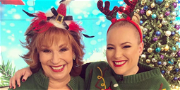 'The View' Host Meghan McCain Torn To Shreds After Fight With Joy Behar