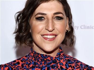 Mayim Bialik's Positive View of Her Divorce