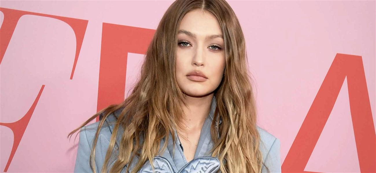 Gigi Hadid Trashed by Photographers for Criticizing Their Work But Choosing to Profit Off It