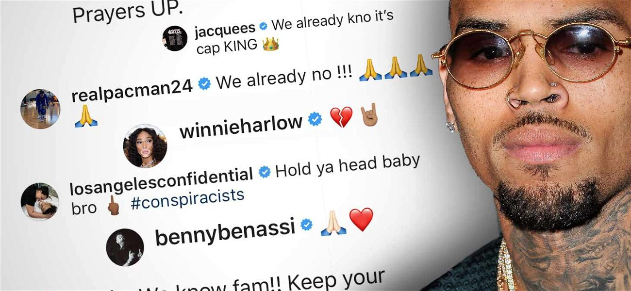 Chris Brown Gets Celeb Support From The Game, T.I., Winnie Harlow and More After Rape Allegation