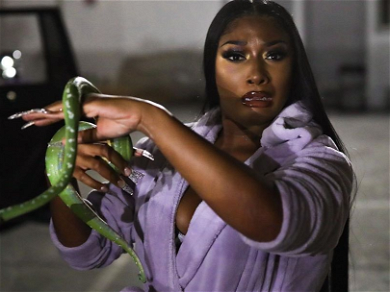 Megan Thee Stallion Reveals 'WAP' Was Filmed With LIVE SNAKES!! — See The Creepy Photos!