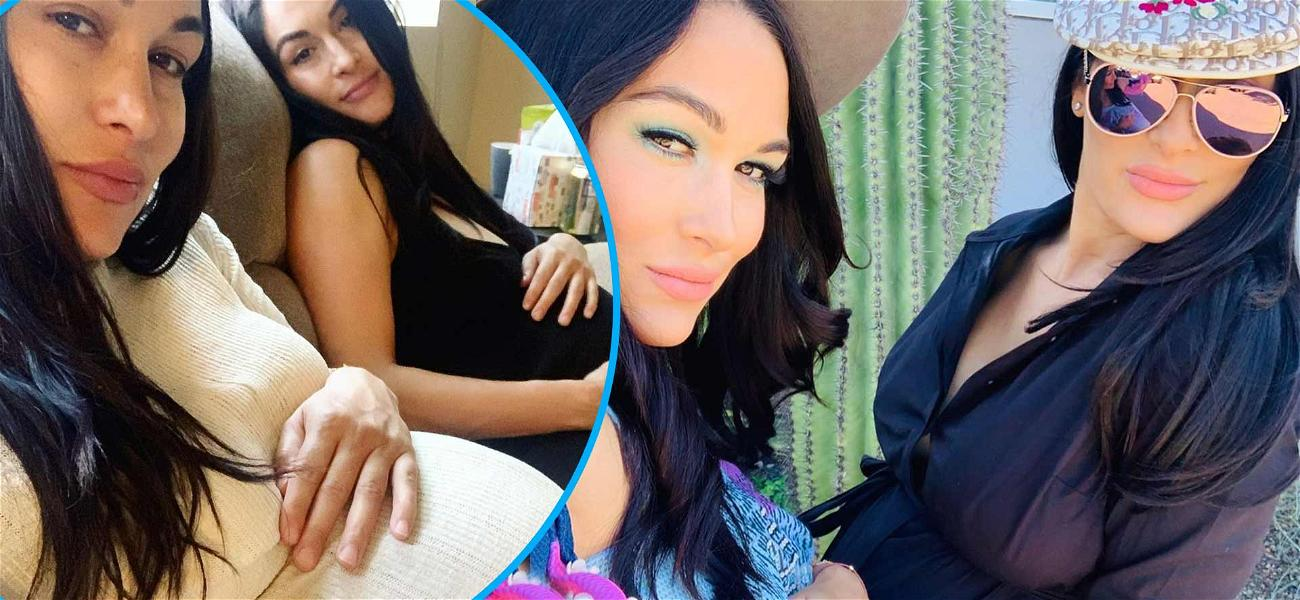 Nikki And Brie Bella Compare Baby Bumps: 'Who's Baby Is Coming First?'