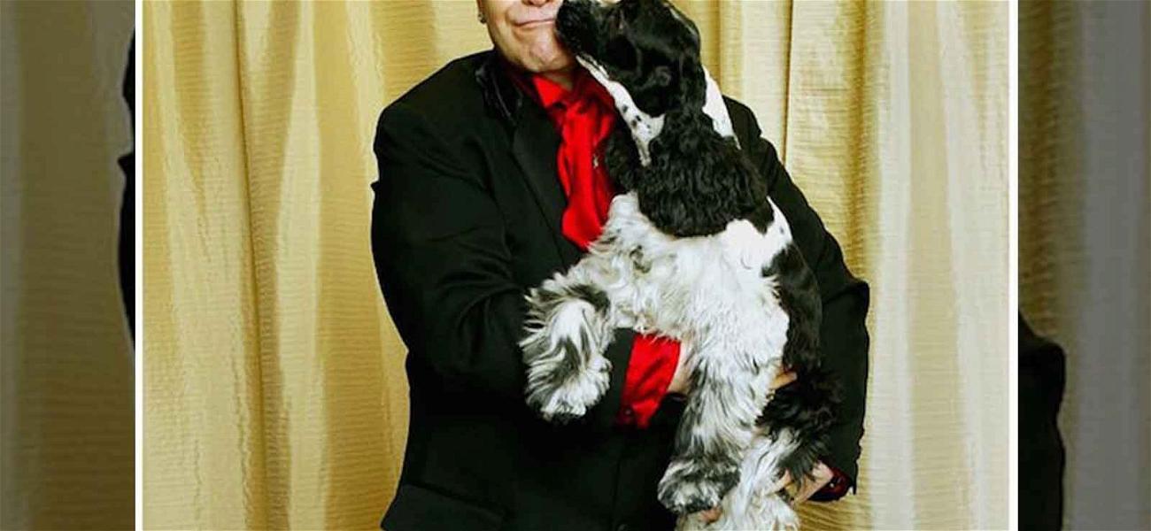Elton John's Beloved Dog Dies, Singer Dedicates Song to Arthur