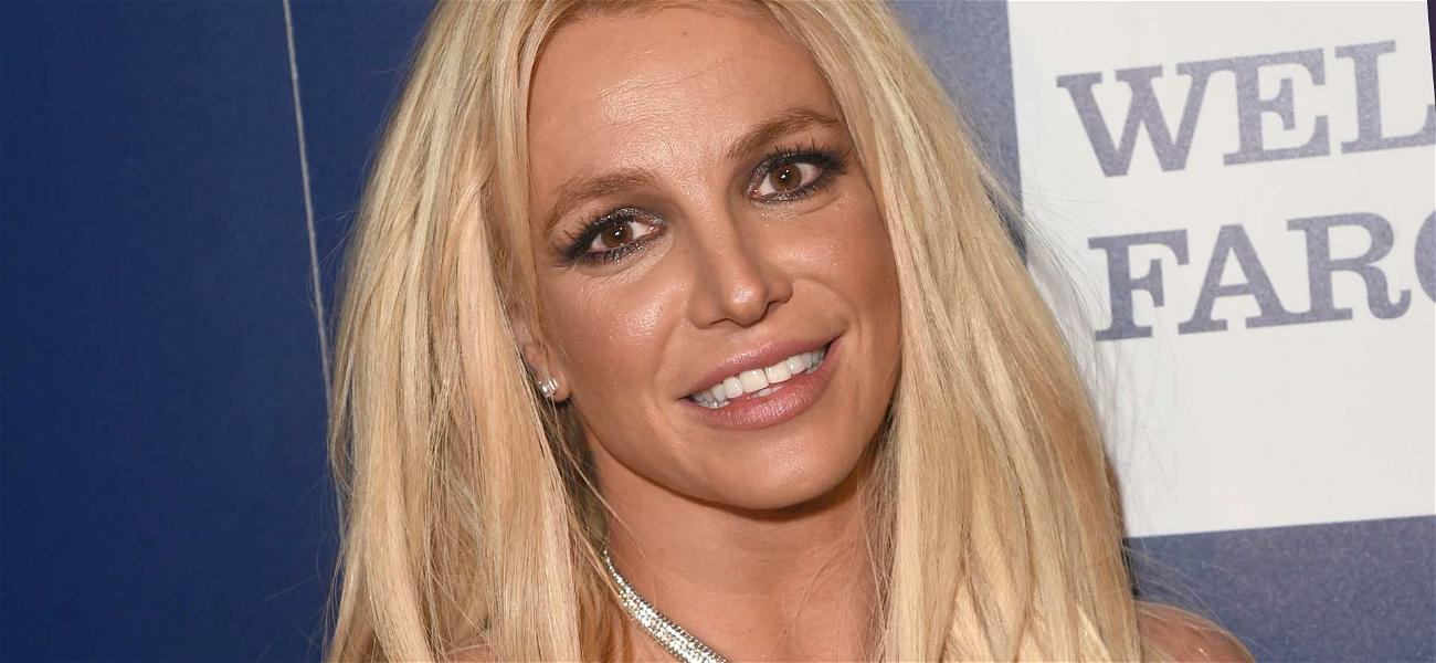Britney Spears Enters Mental Health Facility, Kevin Federline Takes More Custody of Children