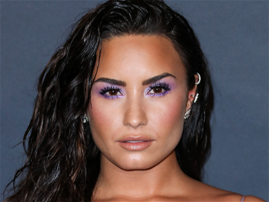 Demi Lovato's Fans Are Worried About Her Sobriety