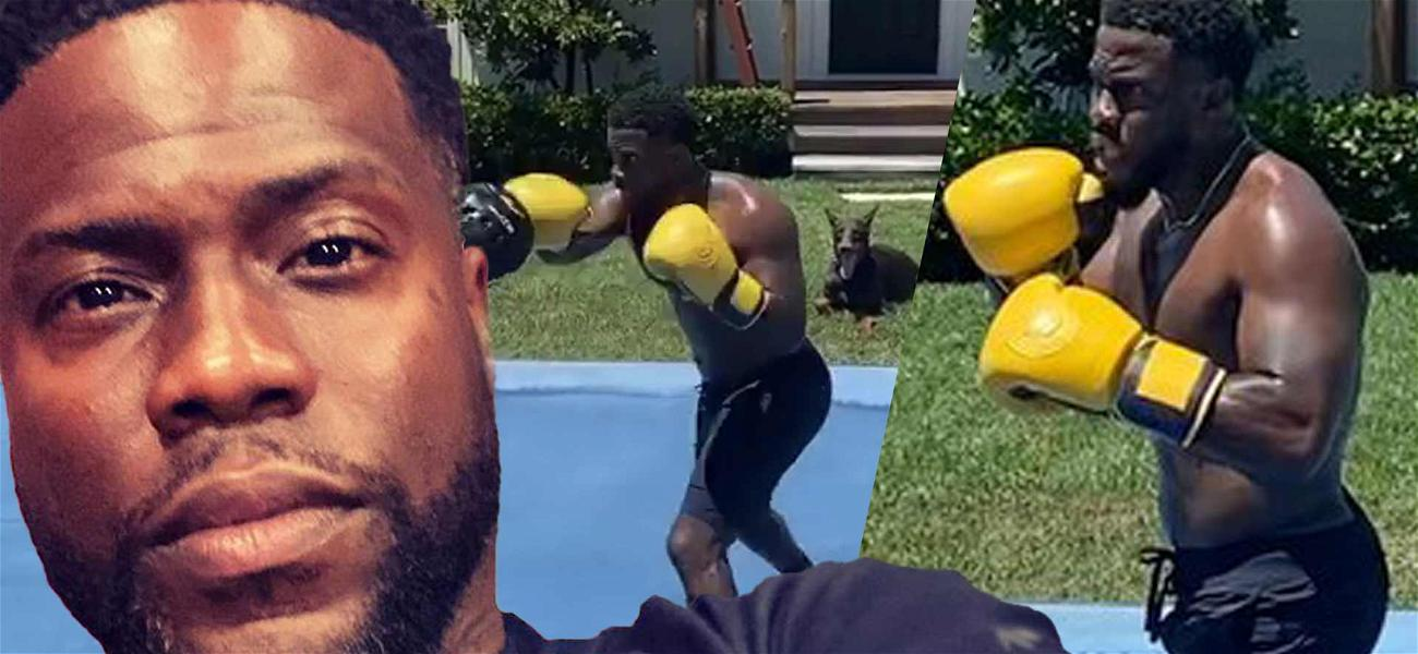 Kevin Hart Shows Off Impressive Boxing Skills And Chiseled Arms During Intense Training Session