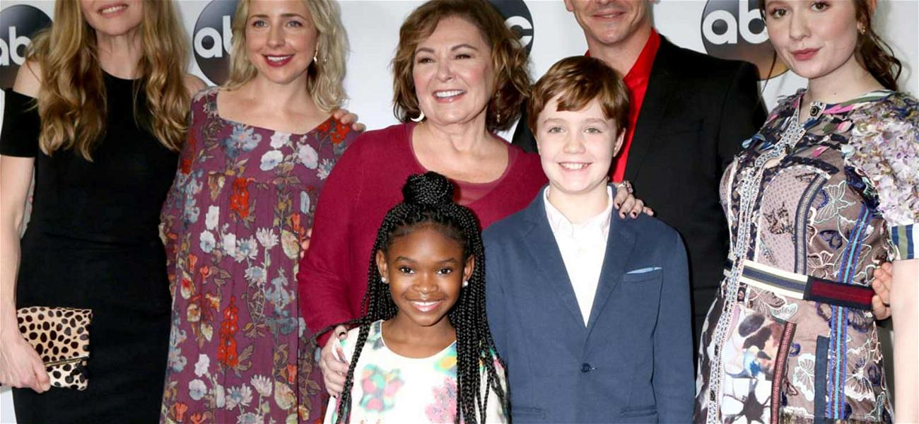 'Roseanne' Contracts Had Provisions Against 'Reckless Conduct' & Offending the Community