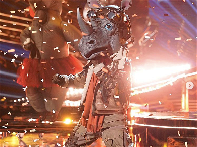 Here Is Every Clue & Guess Of Who The Rhino Is On Fox's 'The Masked Singer'
