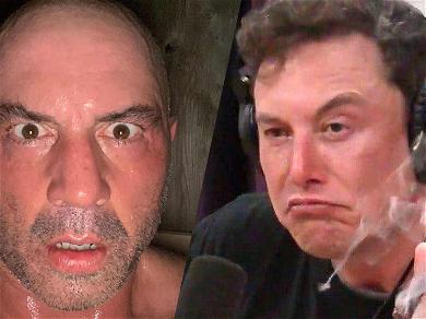 Elon Musk Gets High Praise From Joe Rogan After Weed Tweet
