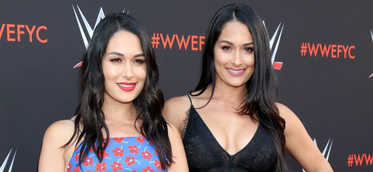Brie And Nikki BellaAdd Baby Care To List Of Business Ventures