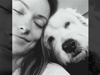 Olivia Wilde's Beloved Pooch Has Died
