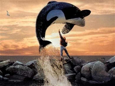 'Free Willy' Star Facing 1-Year in Jail After Being Charged with Domestic Violence